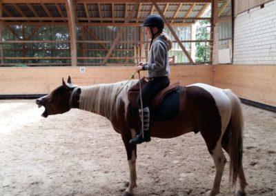 entspannter_reiter_entspanntes_pferd
